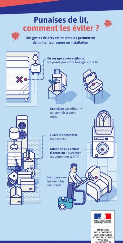 Plan de lutte contre les punaises de lit (les éviter)